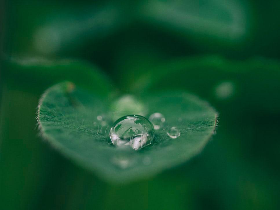15 curiozități și informații interesante despre apă